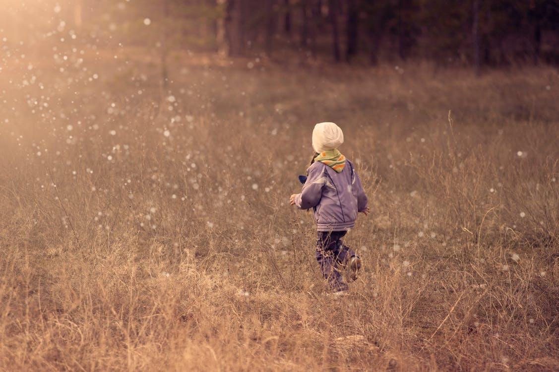 年度优秀散文 为了梦想,做更好的自己