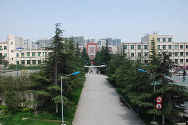 四川太阳城学院分析个人简历的注意事项