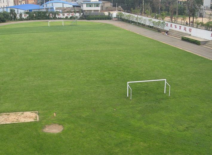云南省贸易经济学校足球场