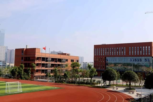 重庆市学海员专业有哪些职业学校